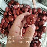 临泽小枣核肉分离机新型2017款